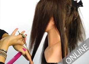 cursus-extensions-knippen-snijden-online-hairextensions-socap-original