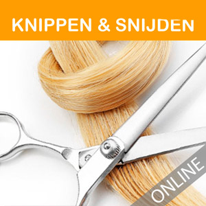 online-cursus-knippen-snijden-hairextensions